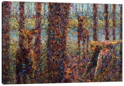 Encounter Canvas Art Print