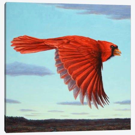Flight Canvas Print #JJN18} by James W. Johnson Canvas Print