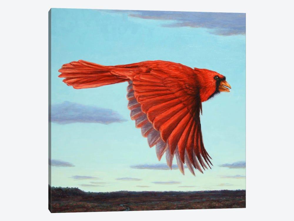 Flight by James W. Johnson 1-piece Canvas Art