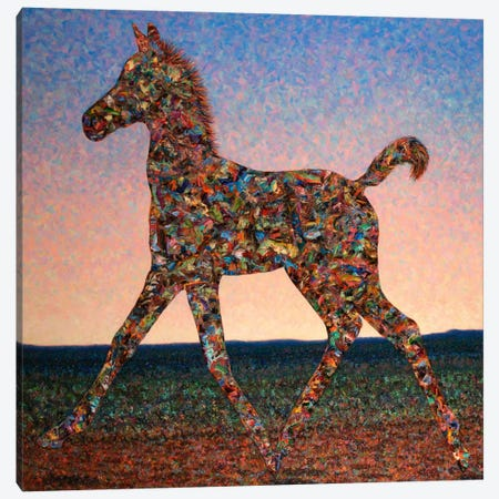 Foal Spirit Canvas Print #JJN19} by James W. Johnson Art Print
