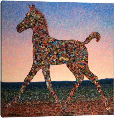 Foal Spirit Canvas Art Print