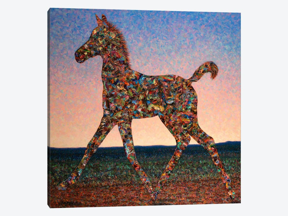 Foal Spirit by James W. Johnson 1-piece Canvas Art Print
