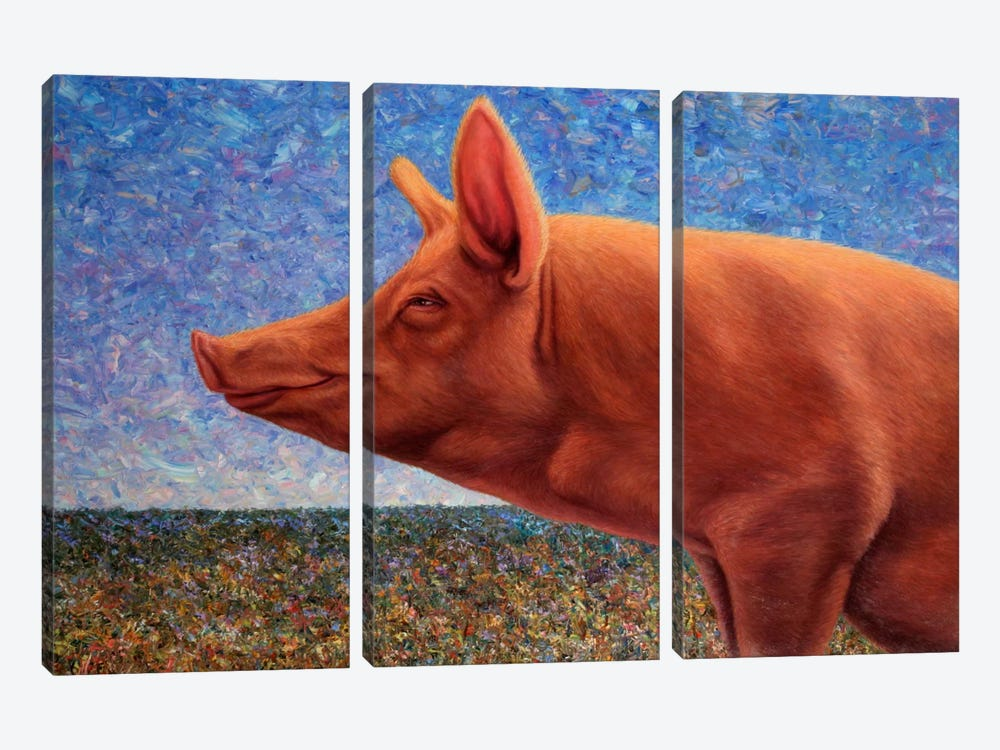 Free Range Pig by James W. Johnson 3-piece Art Print