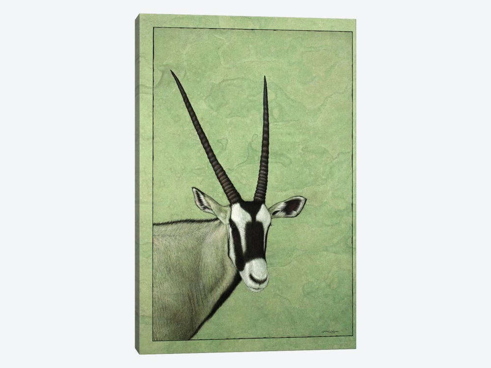 Gemsbok by James W. Johnson 1-piece Canvas Wall Art