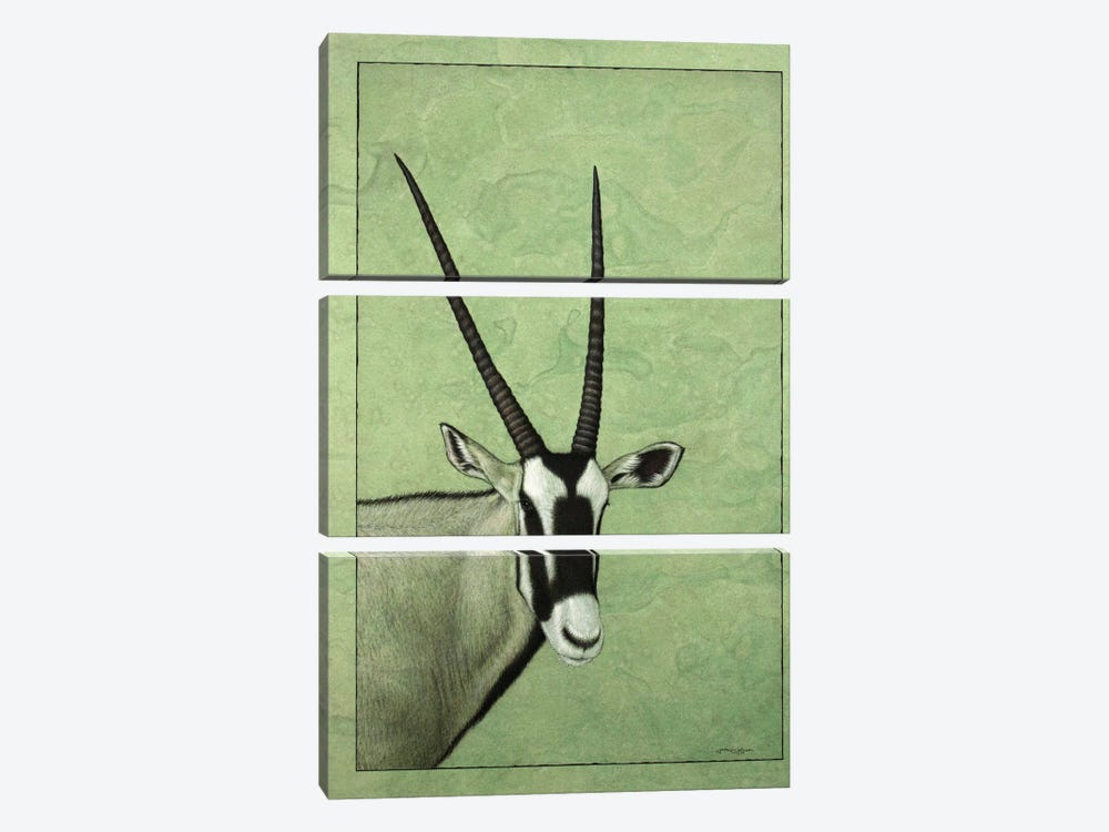 Gemsbok by James W. Johnson 3-piece Canvas Artwork