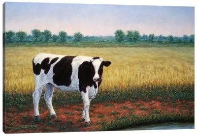 Happy Holstein Canvas Print #JJN24