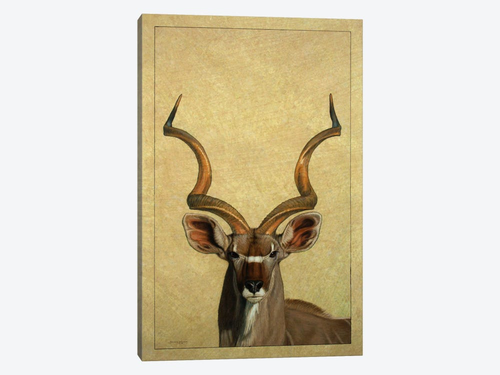 Kudu by James W. Johnson 1-piece Canvas Art