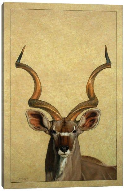 Kudu Canvas Art Print