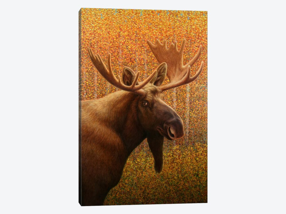 Moose by James W. Johnson 1-piece Canvas Artwork