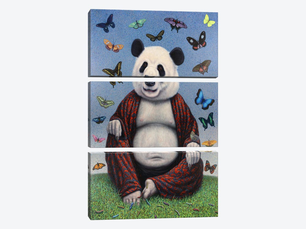 Panda Buddha by James W. Johnson 3-piece Canvas Wall Art