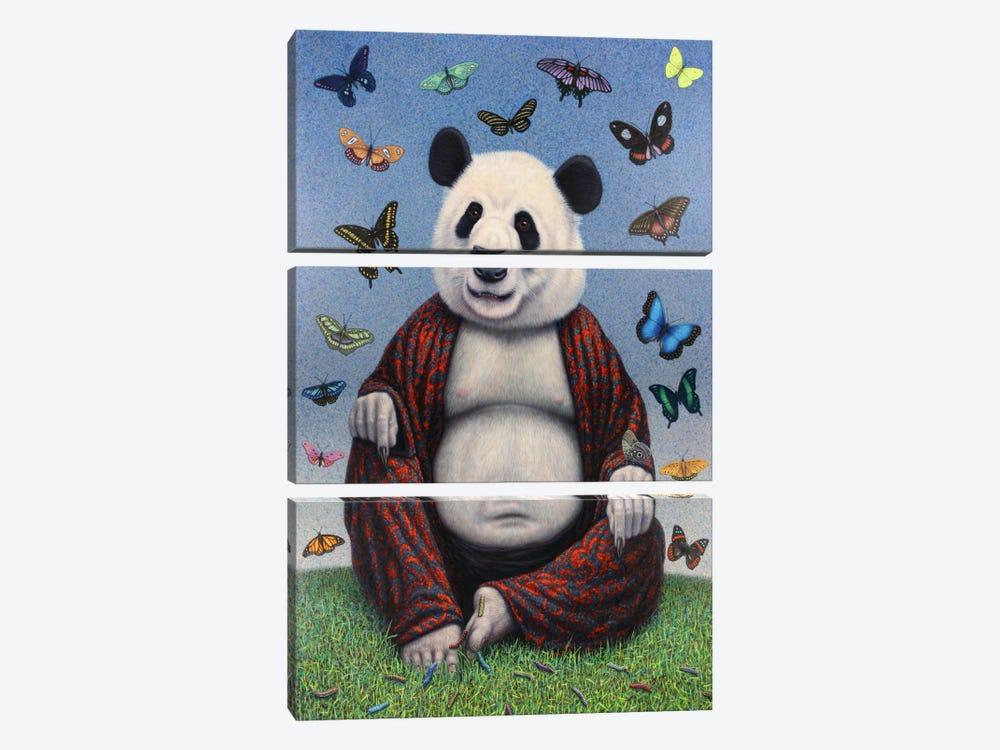 Panda Buddha by James W. Johnson 3-piece Canvas Wall Art