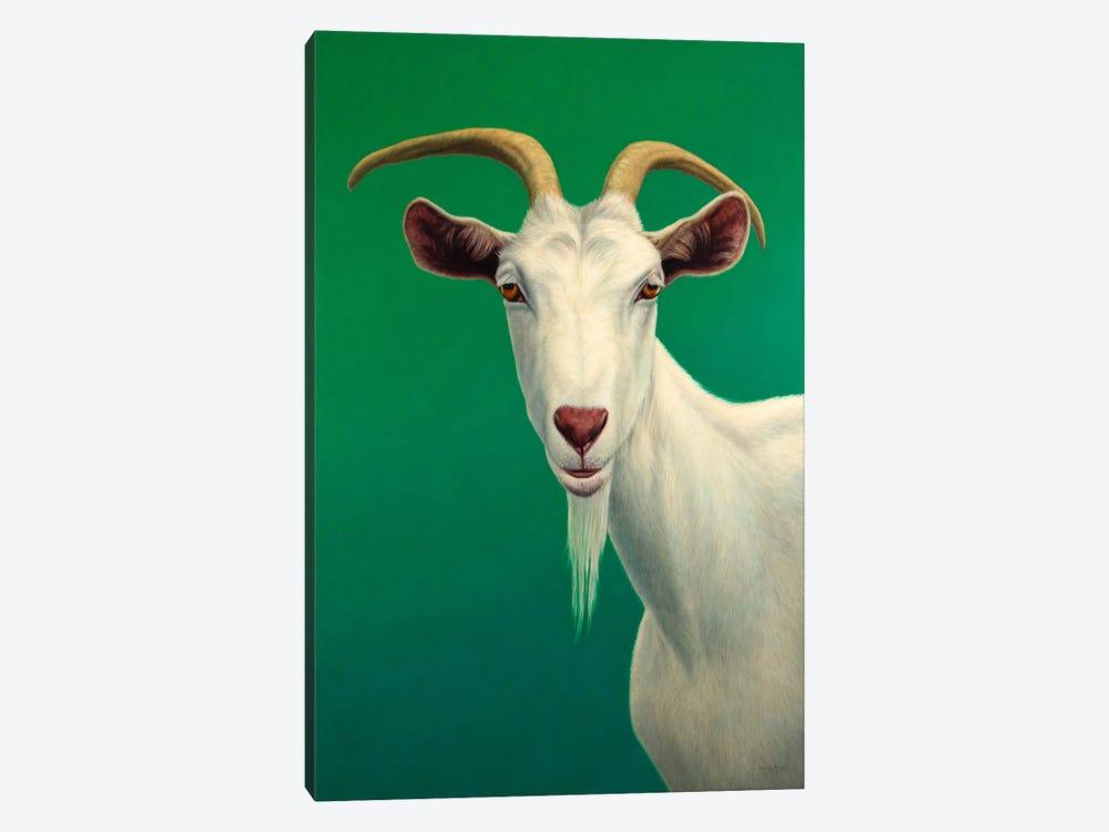 Portrait of A Goat by James W. Johnson 1-piece Art Print