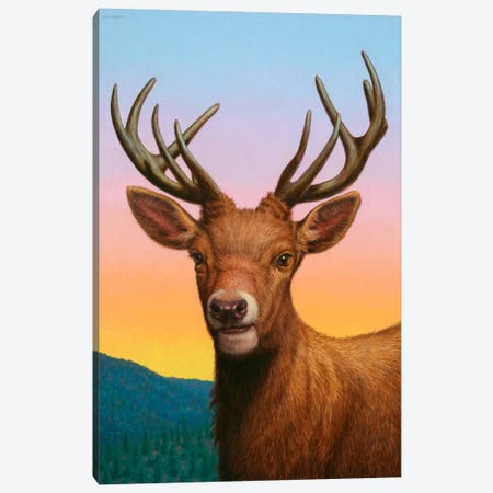 Reddeer Canvas Print #JJN35} by James W. Johnson Canvas Wall Art