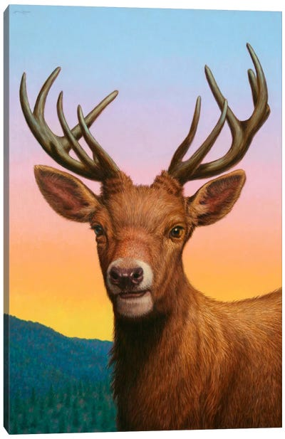 Reddeer Canvas Art Print
