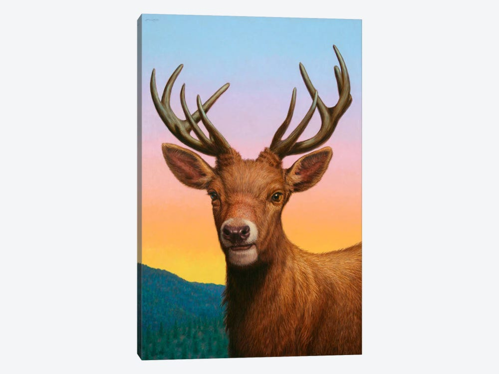 Reddeer by James W. Johnson 1-piece Canvas Art Print
