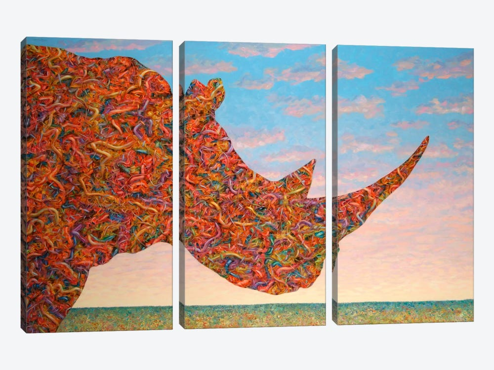 Rhino-Shape by James W. Johnson 3-piece Canvas Artwork