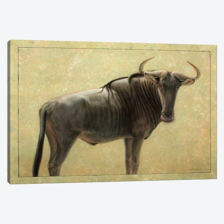 Wildebeest Canvas Print #JJN48} by James W. Johnson Canvas Wall Art