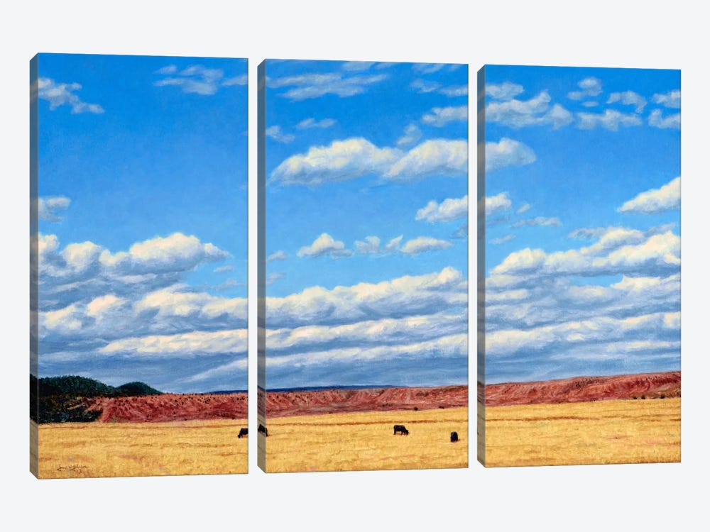 Agri-Nature 15 by James W. Johnson 3-piece Canvas Art