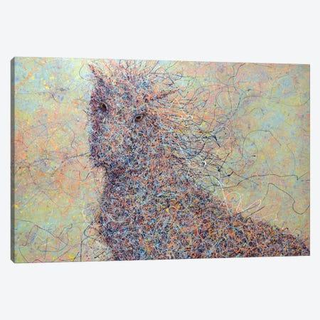 Wildhorse Canvas Print #JJN50} by James W. Johnson Art Print