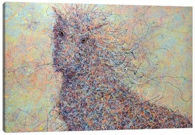 Wildhorse Canvas Art Print