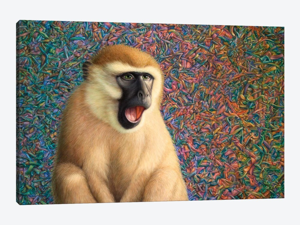 Yawn by James W. Johnson 1-piece Canvas Art Print
