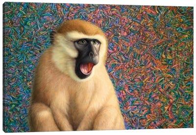 Yawn Canvas Art Print
