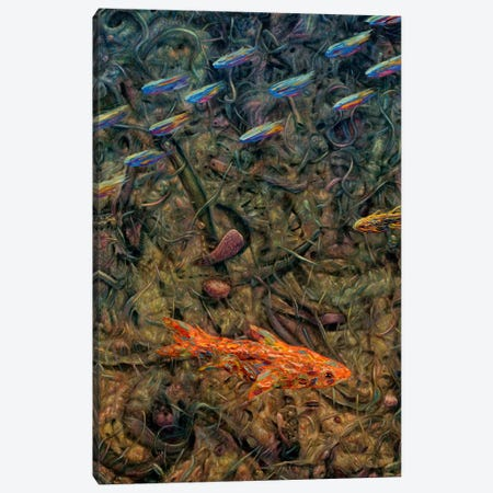 Aquarium 2 Canvas Print #JJN53} by James W. Johnson Canvas Art Print