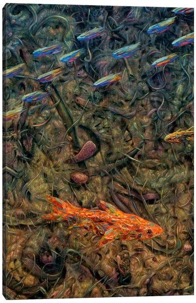 Aquarium 2 Canvas Print #JJN53