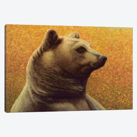 Bear Canvas Print #JJN54} by James W. Johnson Canvas Artwork