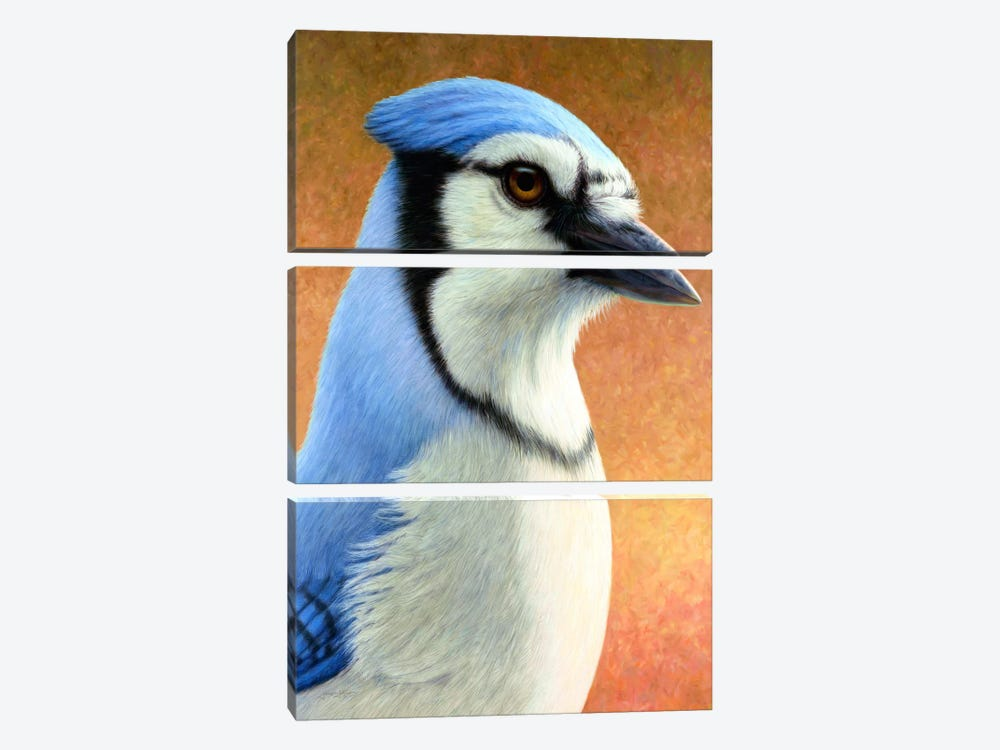 Blue Jay 3-piece Art Print