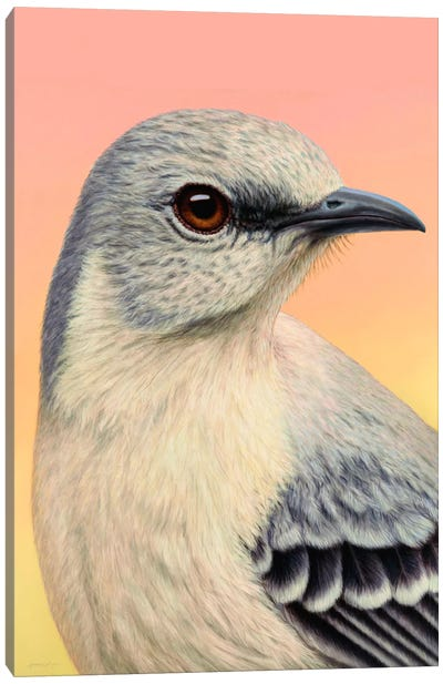 Mocking Bird Canvas Art Print