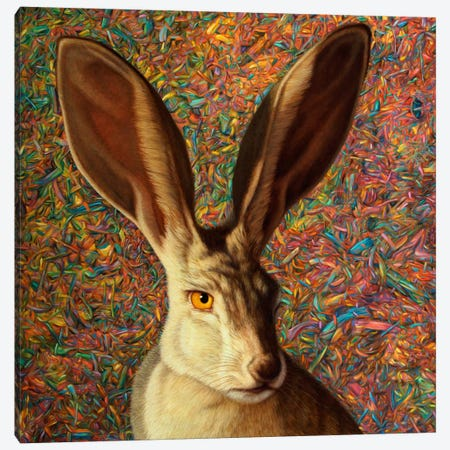 Background Noise Canvas Print #JJN6} by James W. Johnson Canvas Art