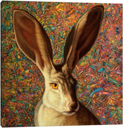 Background Noise Canvas Art Print