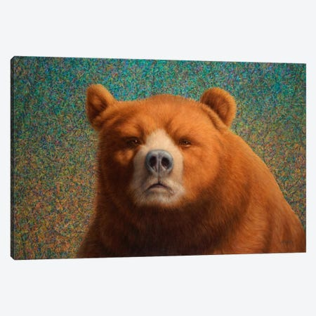 Bearish Canvas Print #JJN8} by James W. Johnson Canvas Print