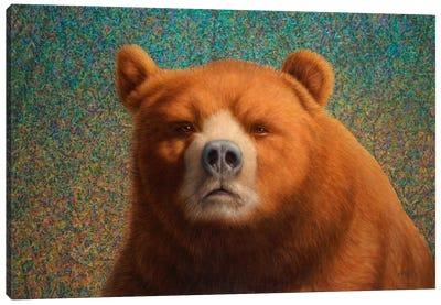 Bearish Canvas Print #JJN8