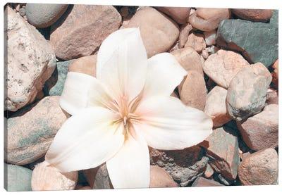 Pebble Beach I Canvas Art Print