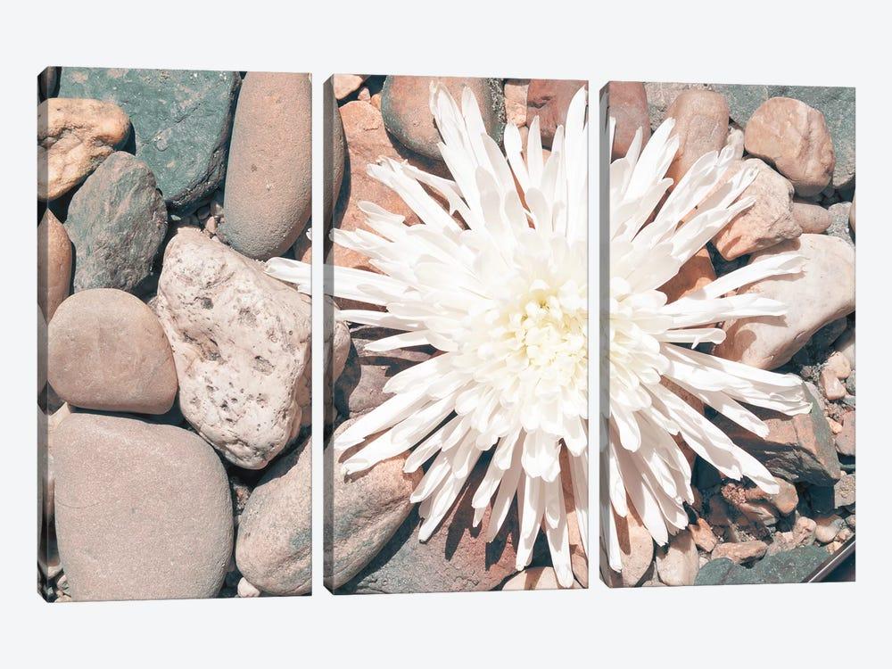 Pebble Beach II by Jason Johnson 3-piece Canvas Art