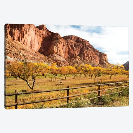 Mormon Pioneer Fruit Orchard Along Waterpocket Fold, Capitol Reef National Park, Utah, USA Canvas Print #JJW10} by Jamie & Judy Wild Canvas Wall Art