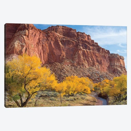 Waterpocket Fold And Sulphur Creek, Capitol Reef National Park, Utah, USA Canvas Print #JJW11} by Jamie & Judy Wild Canvas Wall Art
