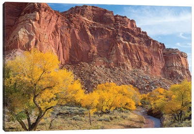 Waterpocket Fold And Sulphur Creek, Capitol Reef National Park, Utah, USA Canvas Art Print