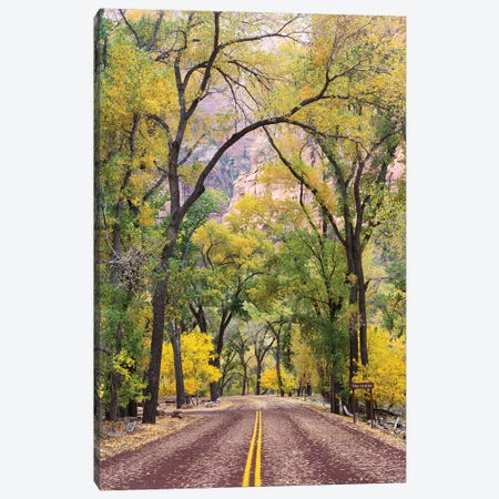 The Grotto Stop, Zion Canyon Scenic Drive (Floor Of The Valley Road), Zion National Park, Utah, USA Canvas Print #JJW12} by Jamie & Judy Wild Canvas Wall Art