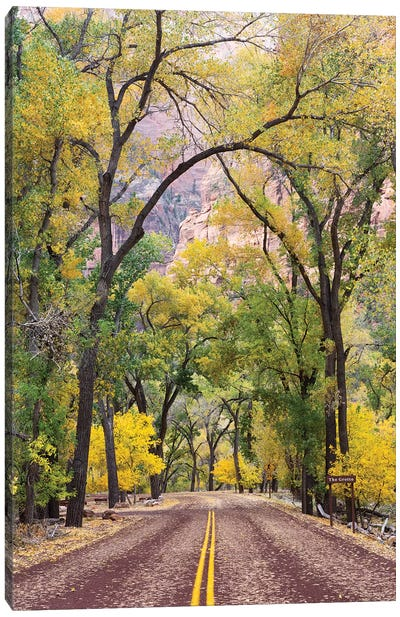 The Grotto Stop, Zion Canyon Scenic Drive (Floor Of The Valley Road), Zion National Park, Utah, USA Canvas Art Print