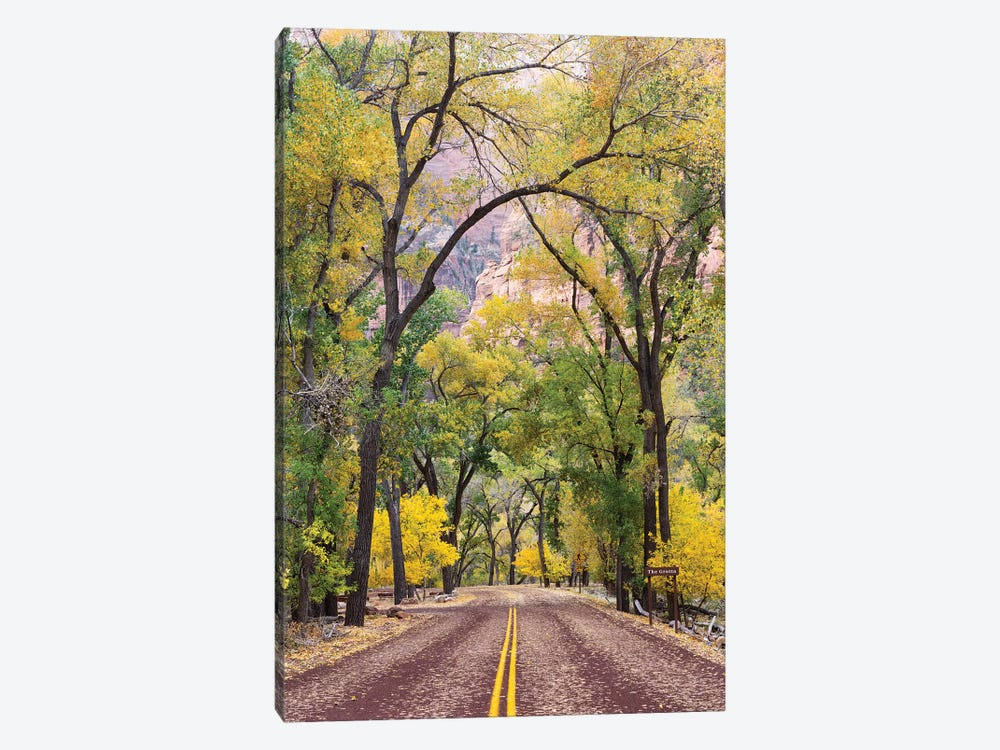 The Grotto Stop, Zion Canyon Scenic Drive (Floor Of The Valley Road), Zion National Park, Utah, USA by Jamie & Judy Wild 1-piece Art Print