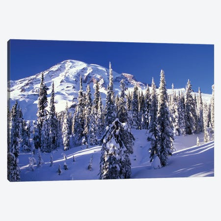 Snow-Covered Mountain Landscape, Mount Rainier National Park, Washington, USA Canvas Print #JJW13} by Jamie & Judy Wild Canvas Wall Art