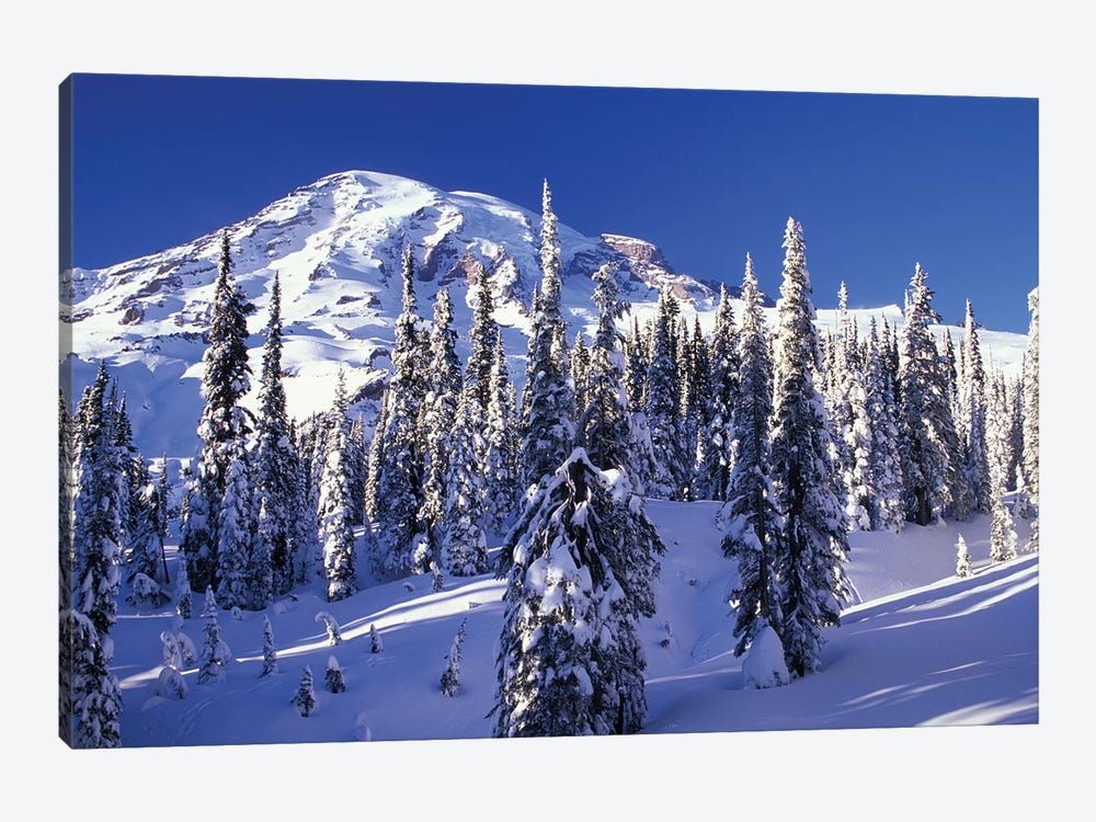 Snow-Covered Mountain Landscape, Mount Rainier National Park, Washington, USA by Jamie & Judy Wild 1-piece Canvas Artwork