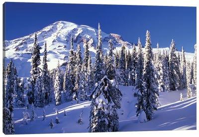 Snow-Covered Mountain Landscape, Mount Rainier National Park, Washington, USA Canvas Art Print