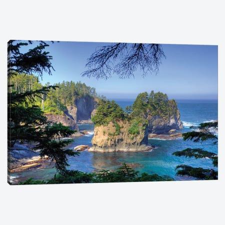Coastal Landscape, Cape Flattery, Olympic Peninsula, Makah Reservation, Canvas Print #JJW16} by Jamie & Judy Wild Canvas Print