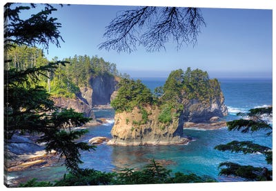 Coastal Landscape, Cape Flattery, Olympic Peninsula, Makah Reservation, Canvas Art Print