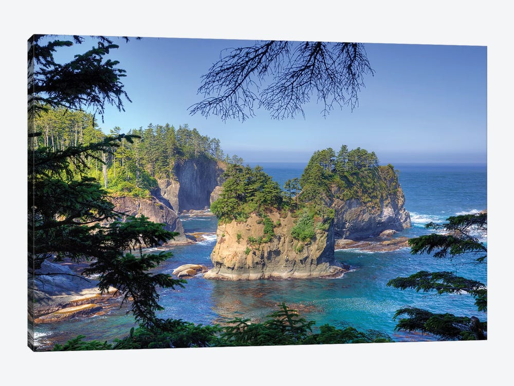 Coastal Landscape, Cape Flattery, Olympic Peninsula, Makah Reservation, by Jamie & Judy Wild 1-piece Canvas Art Print