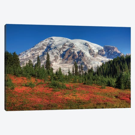 Snow-Covered Mount Rainier With An Autumn Landscape In The Foreground, Mount Rainier National Park, Washington, USA Canvas Print #JJW17} by Jamie & Judy Wild Canvas Print